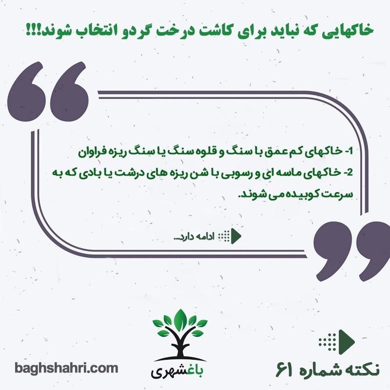 خاک هایی که نباید برای کاشت درخت گردو انتخاب شوند