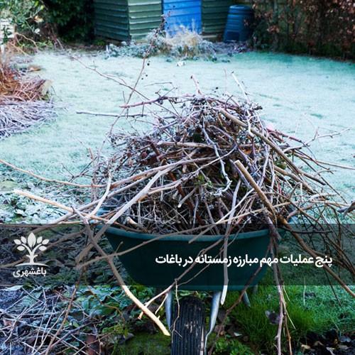 پنج عملیات مهم مبارزه زمستانه در باغات