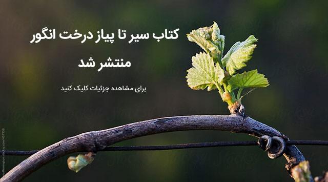 کتاب سیر تا پیاز درخت انگور